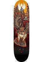 powell-peralta-skateboard-decks-flight-pro-shape-249-hatchell-owl-orange-vorderansicht-0263977