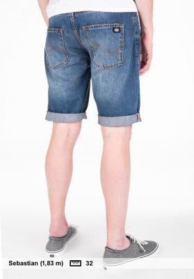 Dickies Michigan Short