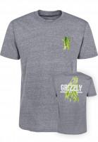 Grizzly T-Shirts Plant Life heathergrey-triblend Vorderansicht