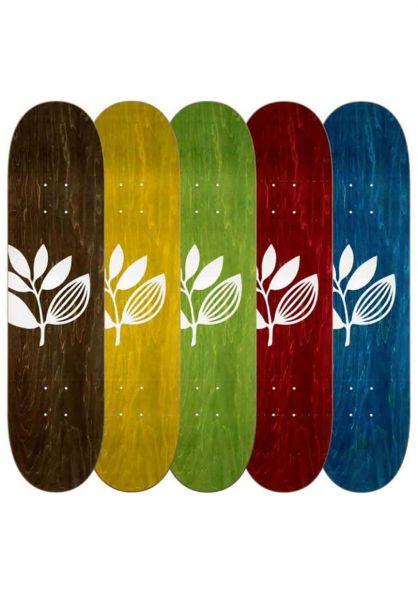 Magenta Skateboard Decks Big Plant Team Wood assorted vorderansicht 0266065