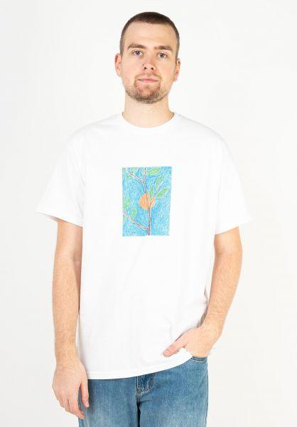 Karaoke Skateboarding T-Shirts Vegetable white vorderansicht 0323244
