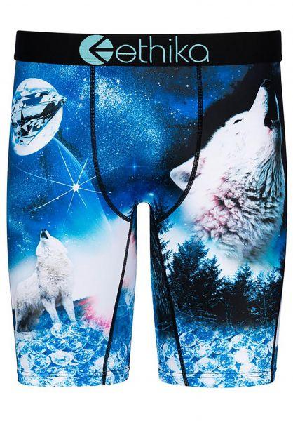 Ethika Unterwäsche Snow Cap Dog Staple multicolored vorderansicht 0213303