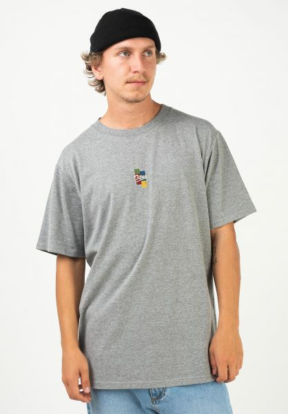 TITUS T-Shirts Ruslan greymottled vorderansicht 0320927