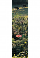 MOB-Griptape Griptape High Times Medley fields of dream Vorderansicht