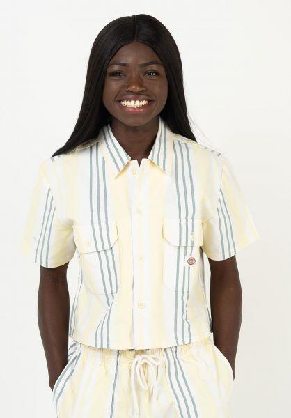 Dickies Hemden kurzarm Grove City mellowgreen vorderansicht 0401024