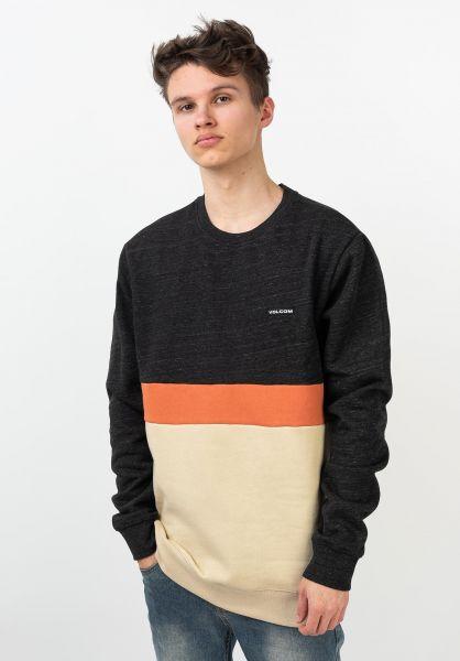 Volcom Sweatshirts und Pullover Sngl Stn Div Crew almond vorderansicht 0422891