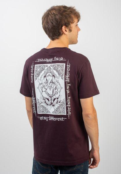 iriedaily T-Shirts All Karma aubergine vorderansicht 0320404