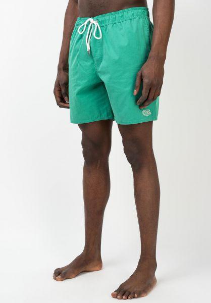 RVCA Boys Opposites Elastic Short