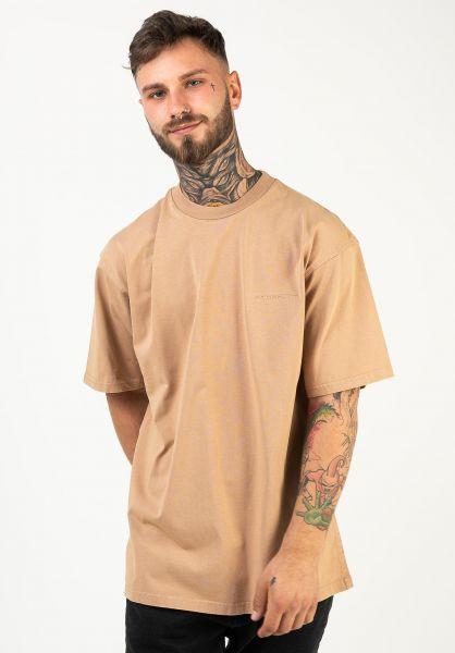 Carhartt WIP T-Shirts Ashland Script dustyhamiltonbrown vorderansicht 0322381