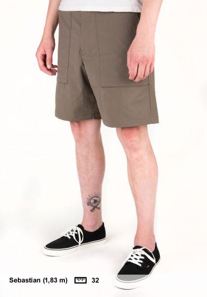 Nike SB Shorts Flex Everett ridgerock Vorderansicht