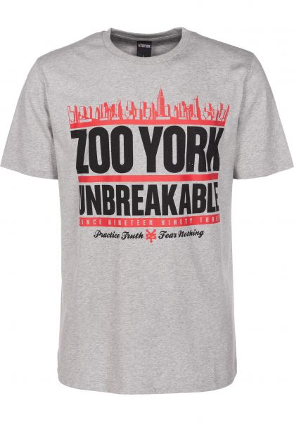 Zoo York T-Shirts Run DMZoo heathergrey Vorderansicht