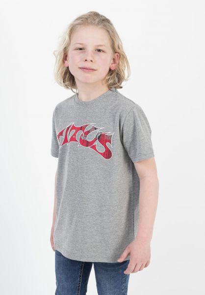 TITUS T-Shirts Schranz Kids greymottled vorderansicht 0373632