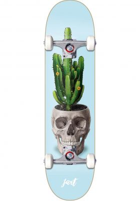 JART Cactus