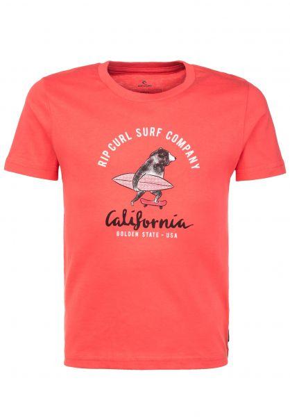 Rip Curl T-Shirts Animoulous Boys cayenne vorderansicht 0323995