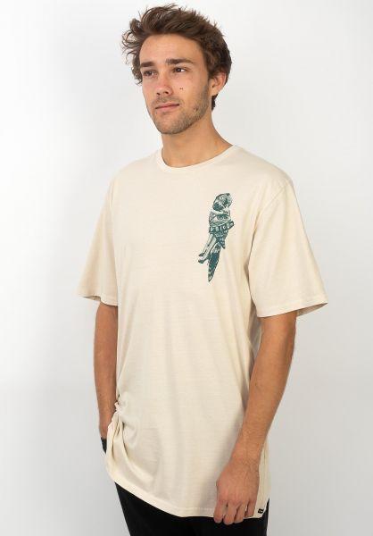Volcom T-Shirts Parrot Collage whiteflash vorderansicht 0320383
