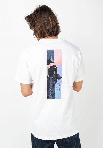 Primitive Skateboards T-Shirts x Marvel Spider Man white vorderansicht 0322241