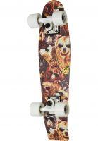 Aluminati Skateboards Cruiser komplett Goby shreddy-teddy Vorderansicht