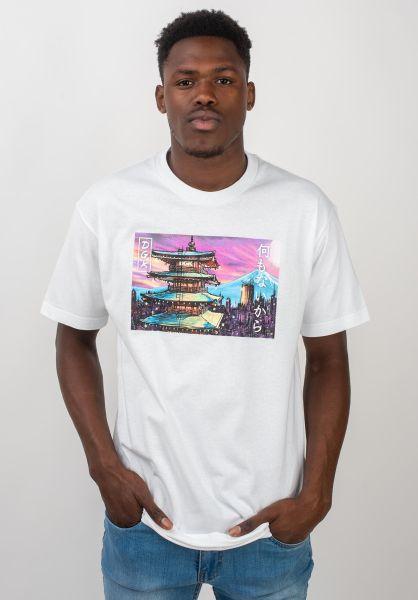DGK T-Shirts Temple City white vorderansicht 0320689