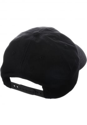 Bones Wheels Profiler Hat