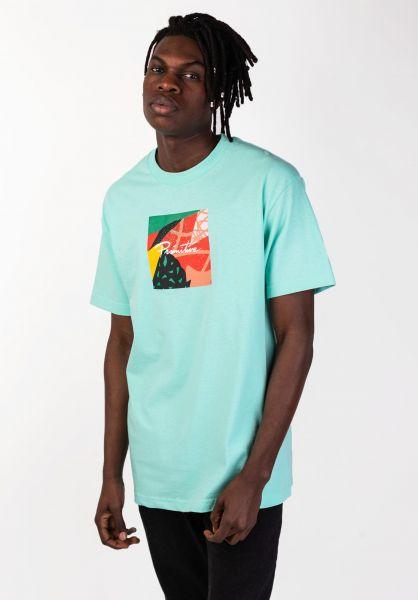 Primitive Skateboards T-Shirts Nuevo Box Fill celadon vorderansicht 0320100