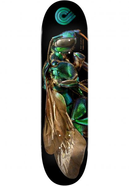 Powell-Peralta Skateboard Decks Levon Biss 242 Orchid Cuckoo Bee Popsicle black vorderansicht 0264877