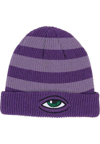 Toy-Machine Mützen Sect Eye Stripe Dock purple vorderansicht 0572525
