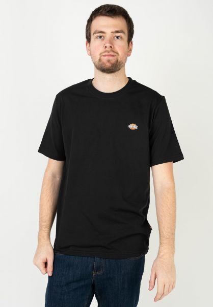 Dickies T-Shirts Mapleton black vorderansicht 0323082