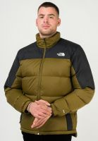 the-north-face-winterjacken-diabolo-down-jacket-firgreen-tnfblack-vorderansicht-0250254