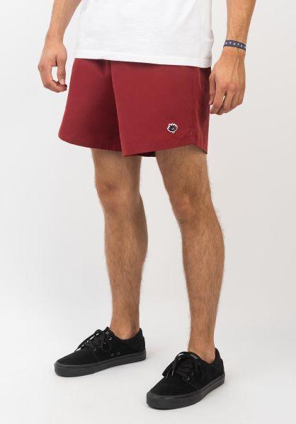 Magenta Chinoshorts Shorts burgundy vorderansicht 0281021
