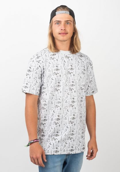 TITUS T-Shirts Occultism AO lightheathergrey vorderansicht 0396721